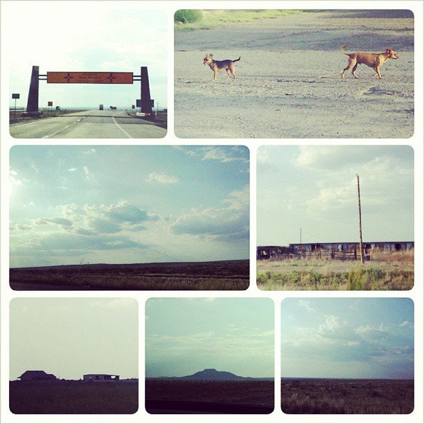 Day 8: New Mexico