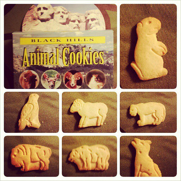 South Dakota Animal Cookies